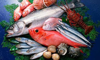 Imagen de variedad de pescados