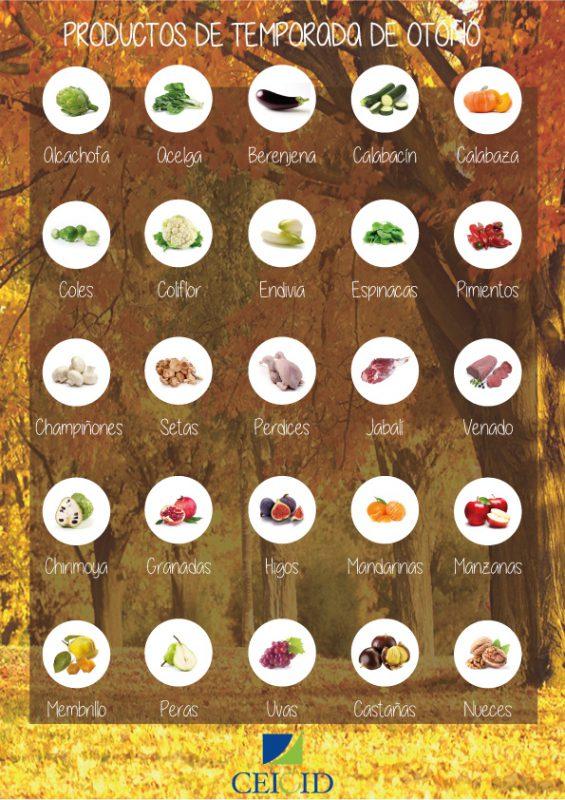 Infografía de productos de temporada de otoño