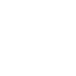 Icono etiqueta precio